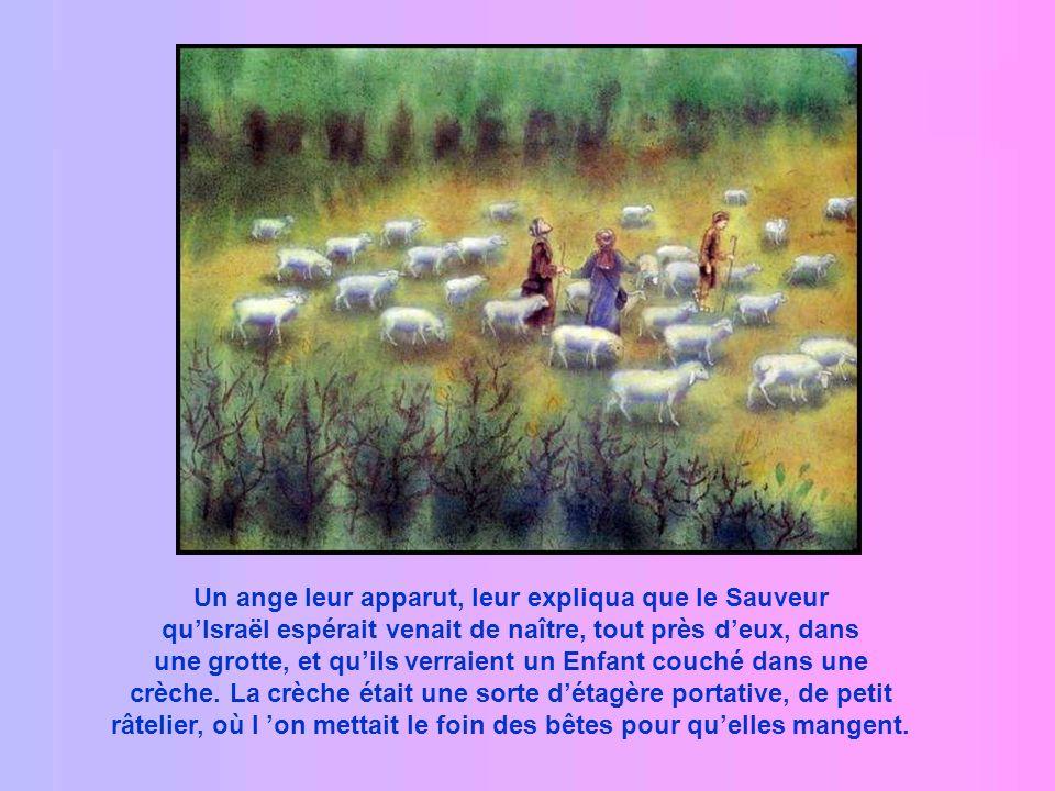 Non loin de là, dans la campagne, des bergers gardaient leurs troupeaux.