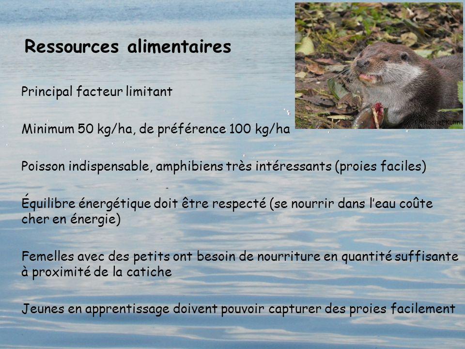 Ressources alimentaires Principal facteur limitant Minimum 50 kg/ha, de préférence 100 kg/ha Poisson indispensable, amphibiens très intéressants (proi