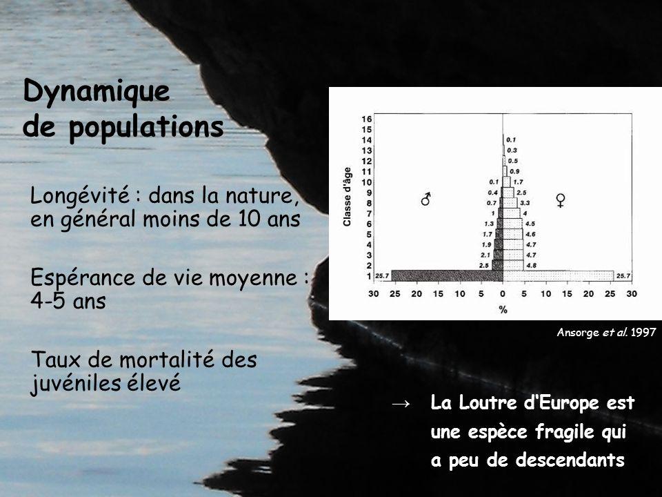 Toutes mesures de conservation des milieux aquatiques profitent à la Loutre, en particulier si elles permettent de répondre aux besoins optimaux de lespèce Conservation de la Loutre et gestion des milieux