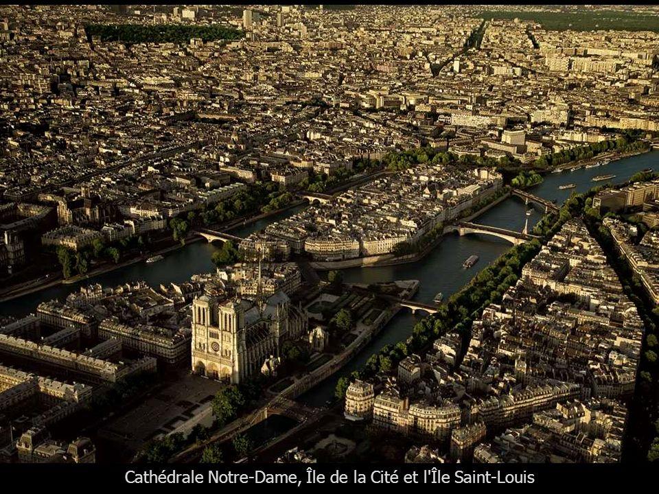 Cathédrale Notre-Dame et le parvis, Île de la Cité