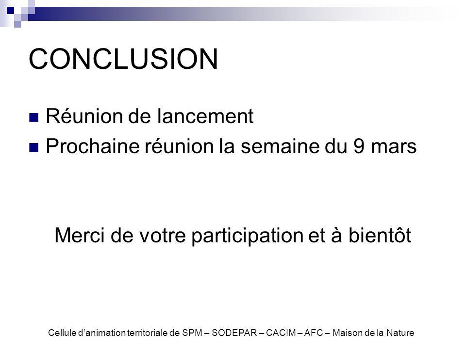 CONCLUSION Réunion de lancement Prochaine réunion la semaine du 9 mars Merci de votre participation et à bientôt Cellule danimation territoriale de SP