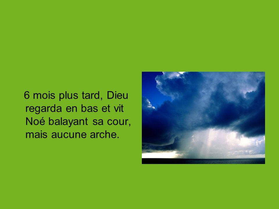 6 mois plus tard, Dieu regarda en bas et vit Noé balayant sa cour, mais aucune arche.
