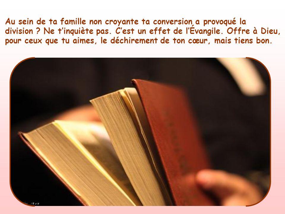 « Si quelquun vient à moi sans me préférer à son père, sa mère, sa femme, ses enfants, ses frères, ses sœurs et même à sa propre vie, il ne peut être