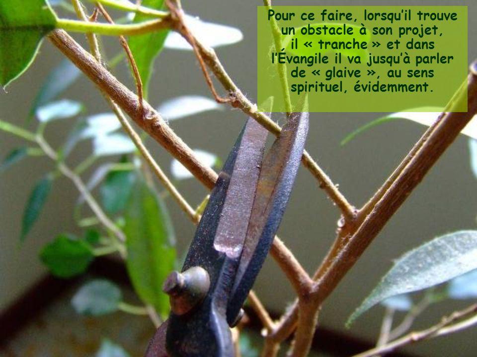 Pour ce faire, lorsquil trouve un obstacle à son projet, il « tranche » et dans lÉvangile il va jusquà parler de « glaive », au sens spirituel, évidemment.