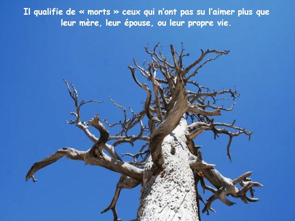 Pour ce faire, lorsquil trouve un obstacle à son projet, il « tranche » et dans lÉvangile il va jusquà parler de « glaive », au sens spirituel, évidem