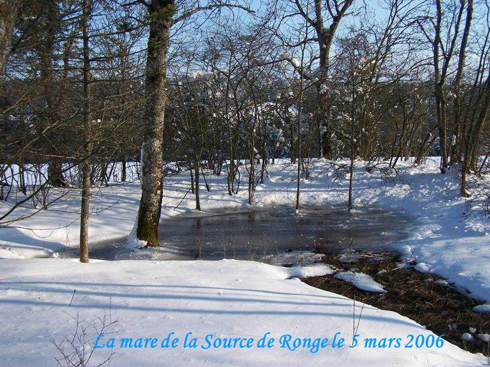 La mare de la Source de Ronge le 5 mars 2006