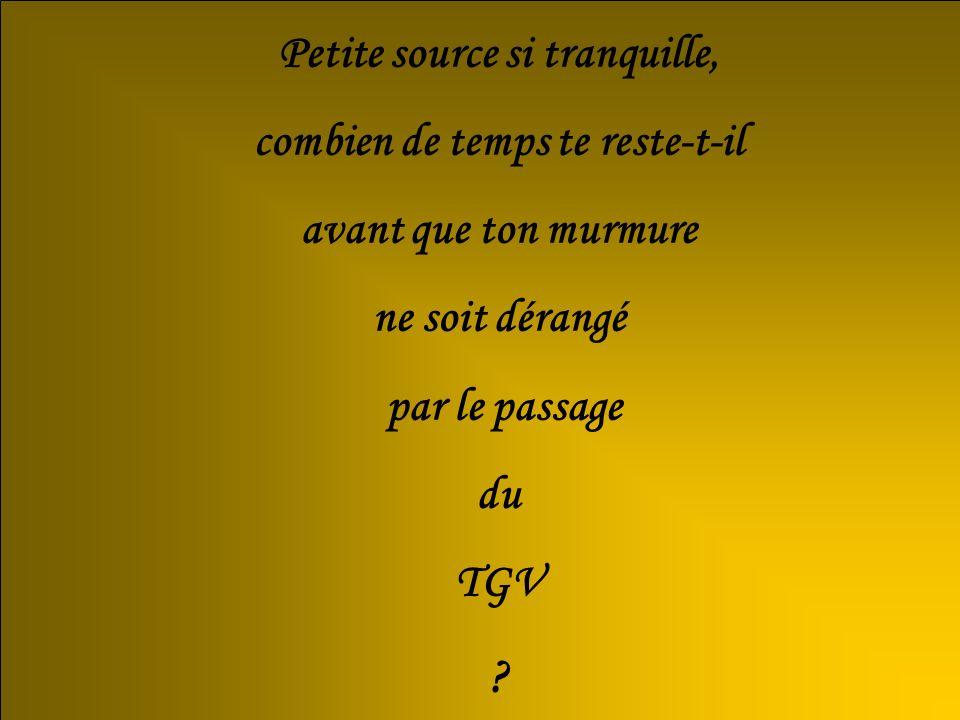 Petite source si tranquille, combien de temps te reste-t-il avant que ton murmure ne soit dérangé par le passage du TGV ?