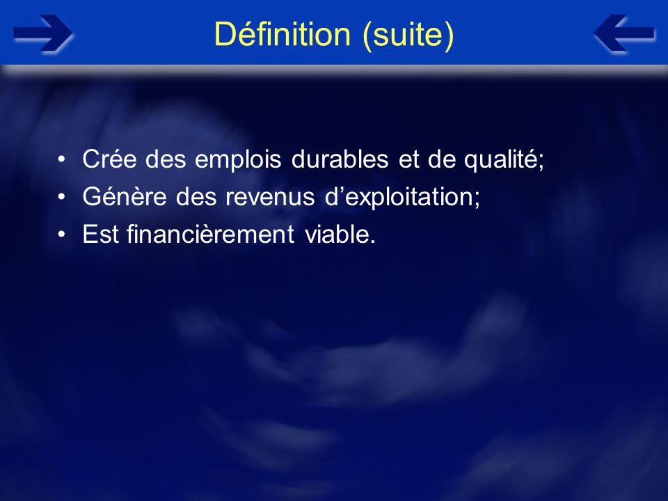 Définition (suite) Crée des emplois durables et de qualité; Génère des revenus dexploitation; Est financièrement viable.
