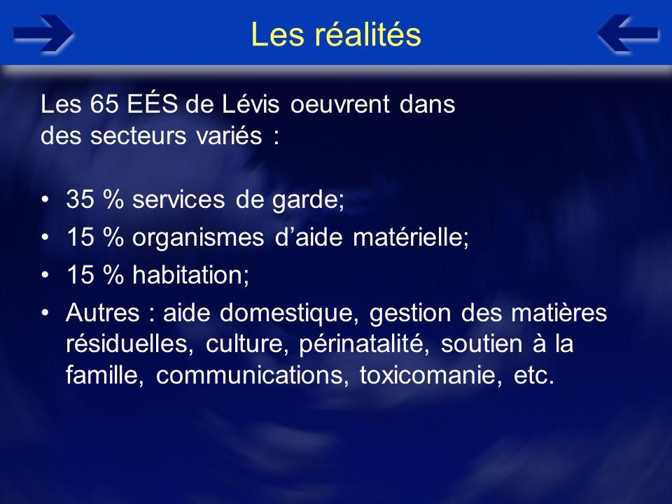 Les réalités 35 % services de garde; 15 % organismes daide matérielle; 15 % habitation; Autres : aide domestique, gestion des matières résiduelles, cu