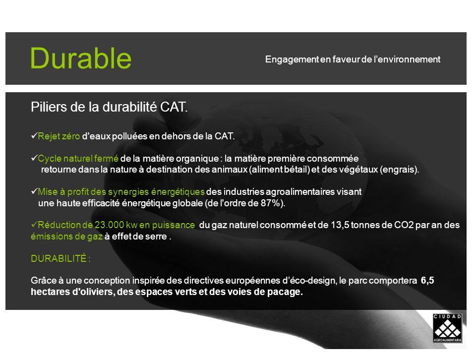 Durable Piliers de la durabilité CAT. Rejet zéro d eaux polluées en dehors de la CAT.