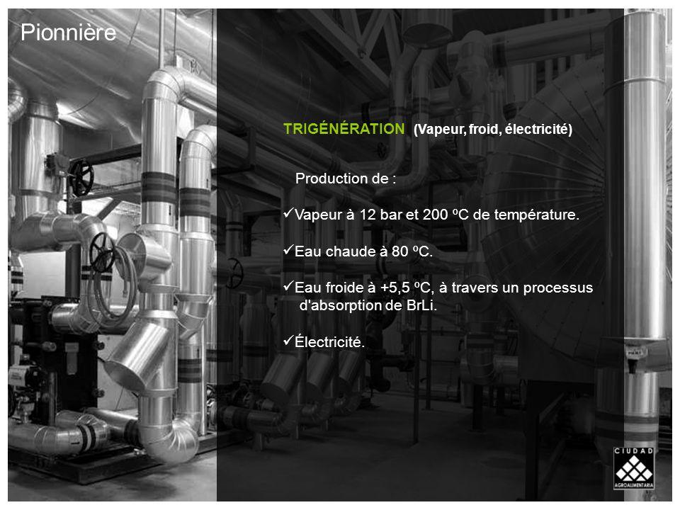 TRIGÉNÉRATION (Vapeur, froid, électricité) Production de : Vapeur à 12 bar et 200 ºC de température.