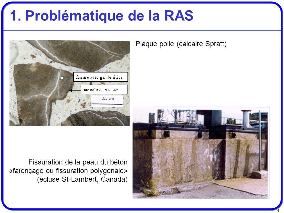 4 1. Problématique de la RAS Plaque polie (calcaire Spratt) Fissuration de la peau du béton «faïençage ou fissuration polygonale» (écluse St-Lambert,