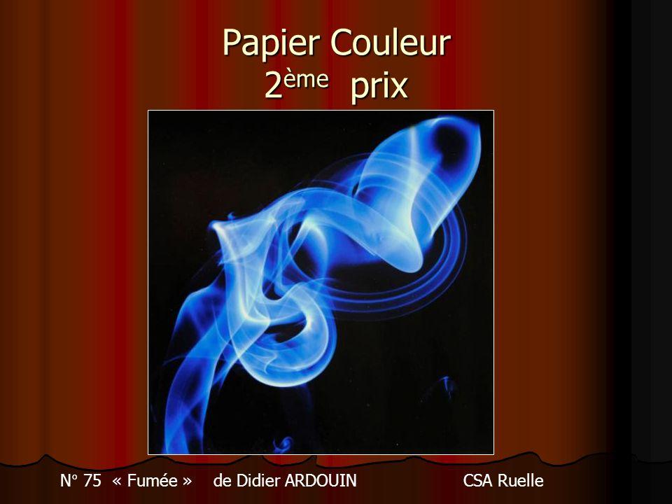 Papier Couleur 2 ème prix N° 75 « Fumée » de Didier ARDOUINCSA Ruelle
