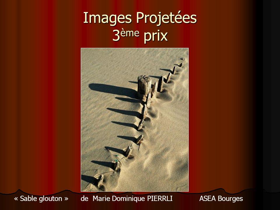 Images Projetées 3 ème prix « Sable glouton » de Marie Dominique PIERRLI ASEA Bourges