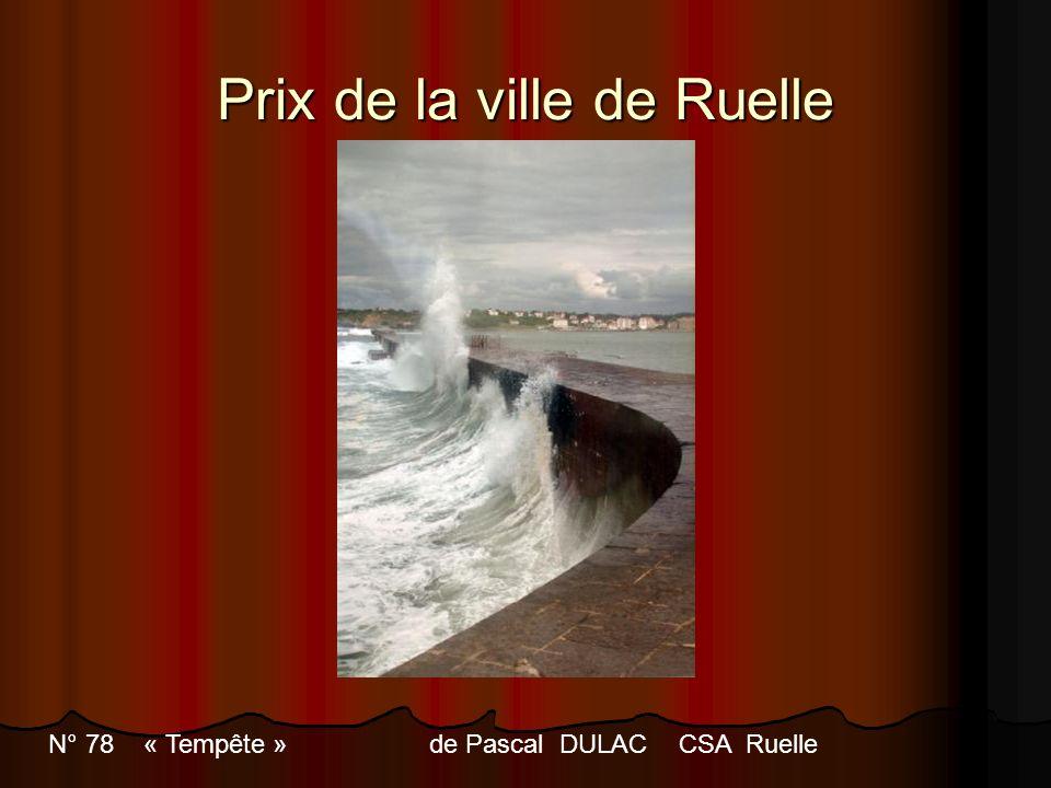 Prix de la ville de Ruelle N° 78 « Tempête » de Pascal DULACCSA Ruelle