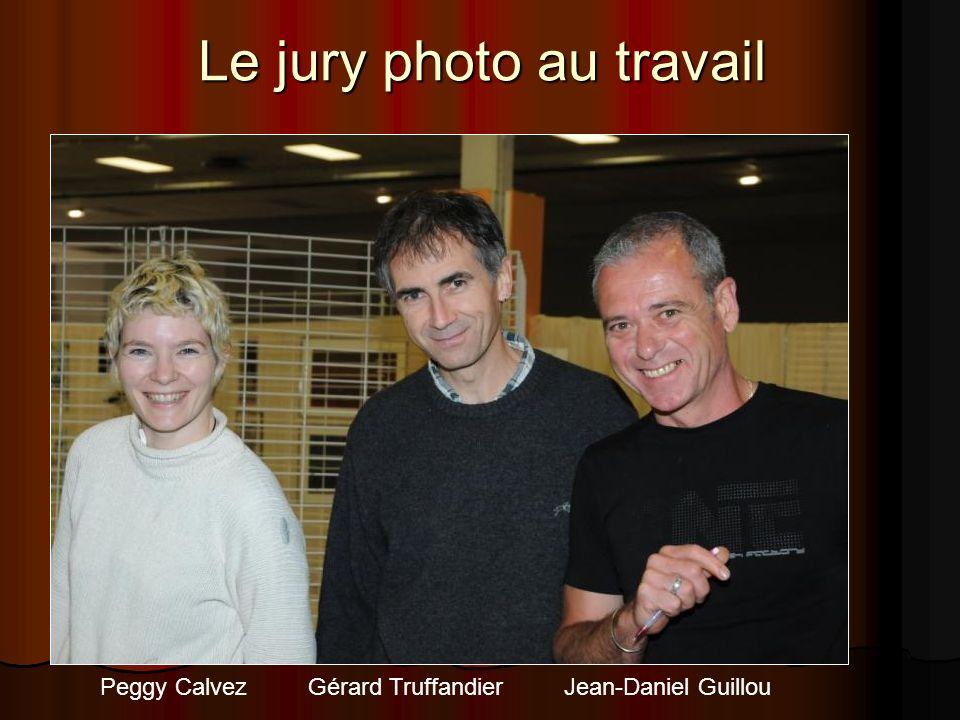Le jury photo au travail Peggy Calvez Gérard Truffandier Jean-Daniel Guillou