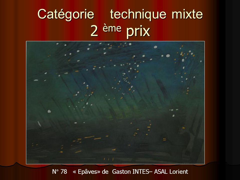 Catégorie technique mixte 2 ème prix N° 78 « Epâves» de Gaston INTES– ASAL Lorient