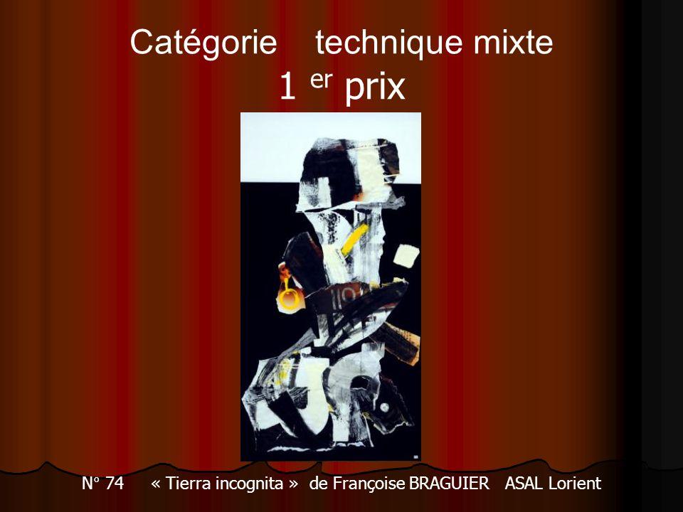 Catégorie technique mixte 1 er prix N° 74 « Tierra incognita » de Françoise BRAGUIER ASAL Lorient