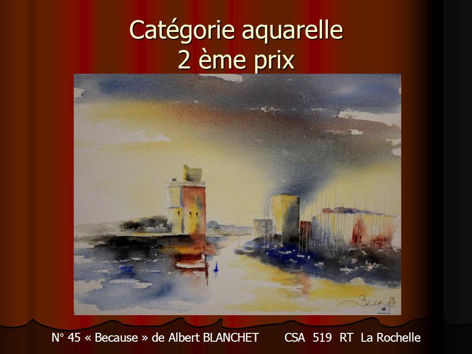 Catégorie aquarelle 2 ème prix N° 45 « Because » de Albert BLANCHET CSA 519 RT La Rochelle