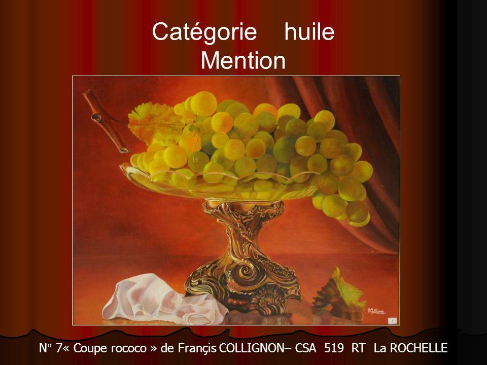 Catégorie huile Mention N° 7« Coupe rococo » de Françis COLLIGNON– CSA 519 RT La ROCHELLE