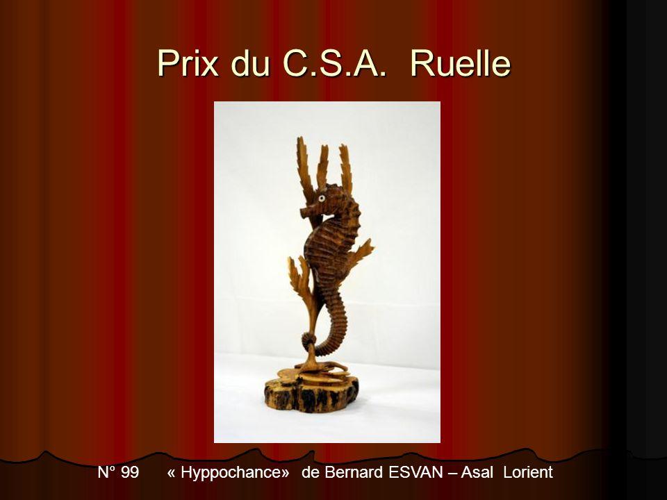 Prix du C.S.A. Ruelle N° 99 « Hyppochance» de Bernard ESVAN – Asal Lorient