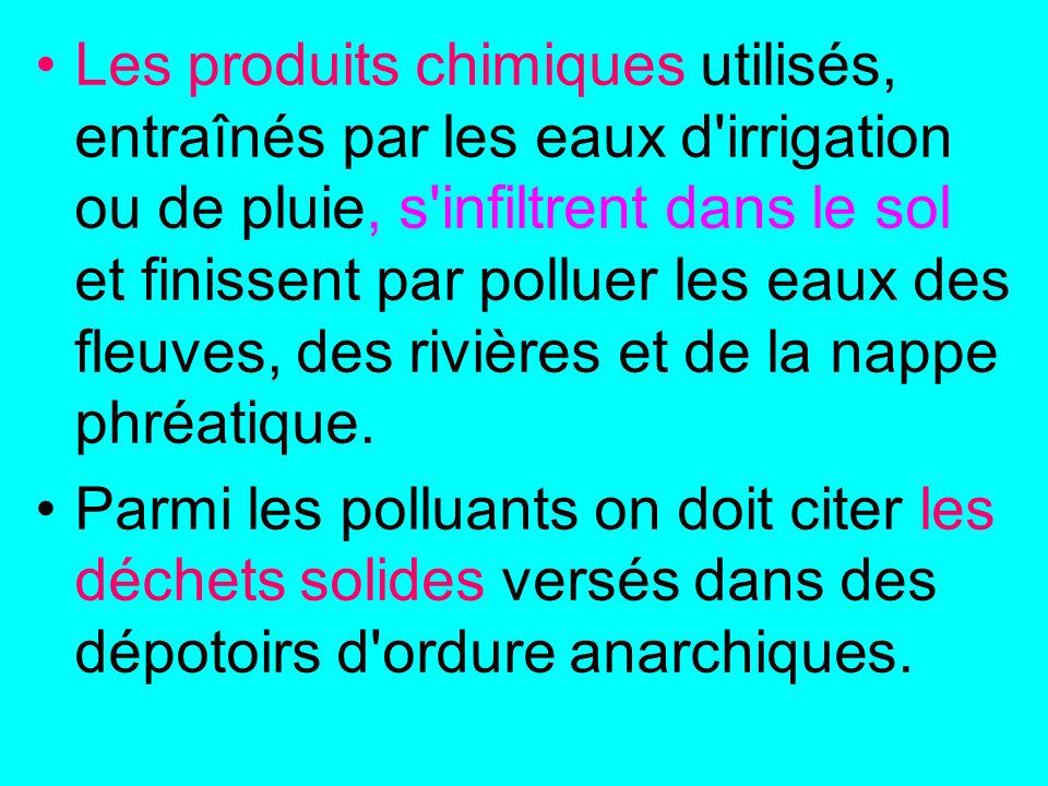 Les produits chimiques utilisés, entraînés par les eaux d irrigation ou de pluie, s infiltrent dans le sol et finissent par polluer les eaux des fleuves, des rivières et de la nappe phréatique.