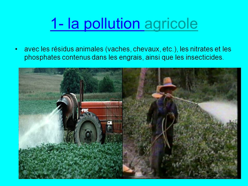 1- la pollution agricoleagricole avec les résidus animales (vaches, chevaux, etc.), les nitrates et les phosphates contenus dans les engrais, ainsi que les insecticides.