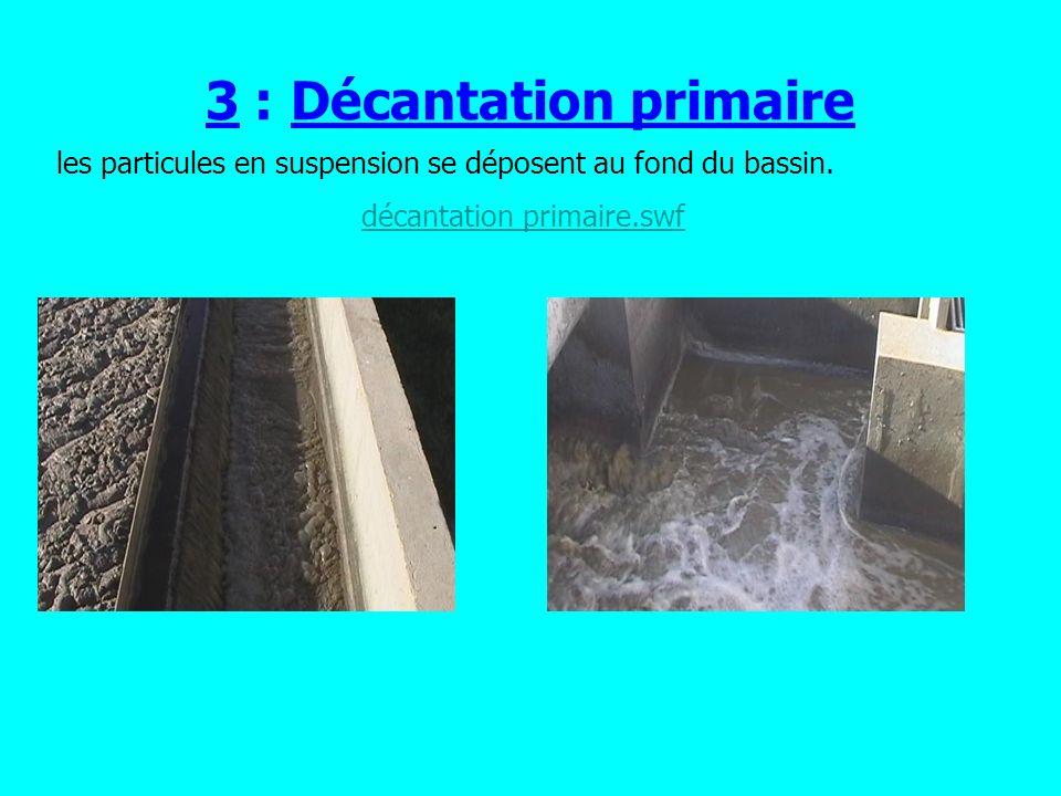 3 : Décantation primaire les particules en suspension se déposent au fond du bassin.