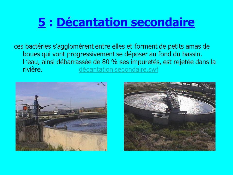 6 : Séchage Les boues primaires et les bous secondaires sont rassemblées dans des grandes bassins.Elles sont séchées fermentées et stabilisées pour quelles deviennent utilisable comme engrais ferlilisants.