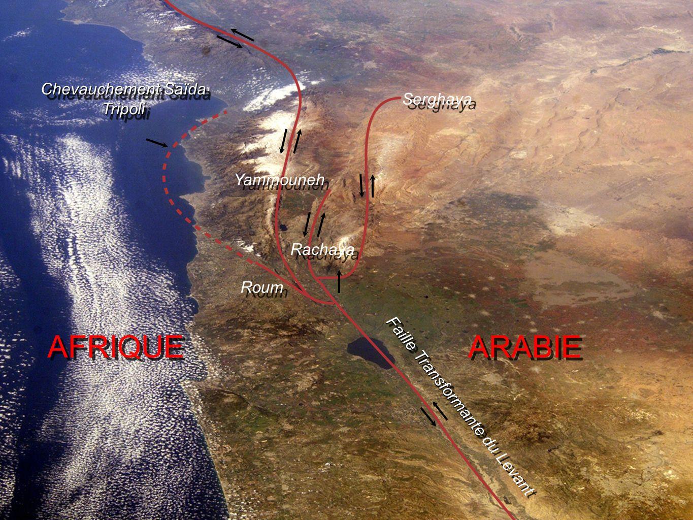 Chevauchement Saïda Tripoli Faille Transformante Faille Transformante du Levant AFRIQUE ARABIE Yammouneh Serghaya Rachaya Roum