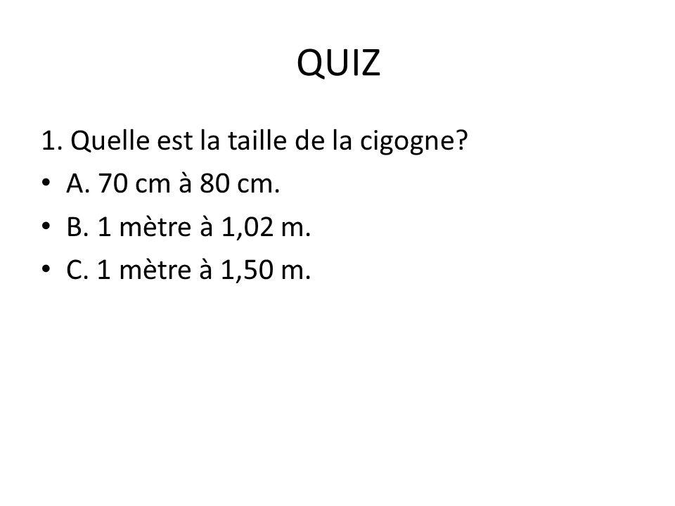 QUIZ 1. Quelle est la taille de la cigogne? A. 70 cm à 80 cm. B. 1 mètre à 1,02 m. C. 1 mètre à 1,50 m.