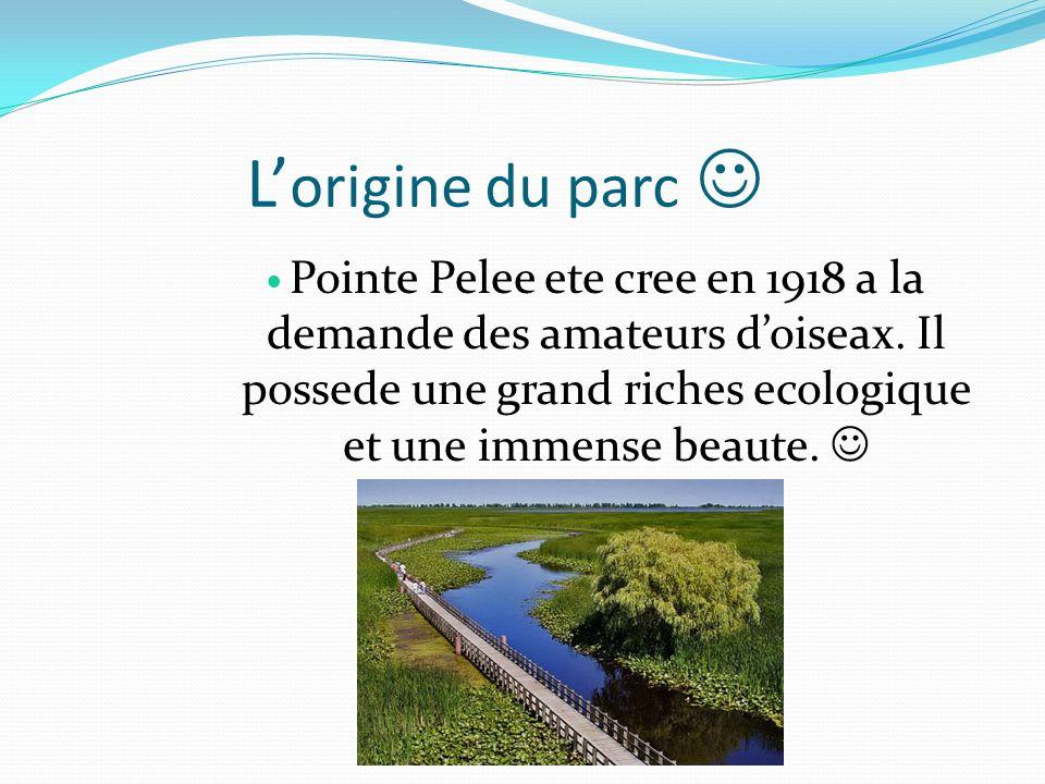L origine du parc Pointe Pelee ete cree en 1918 a la demande des amateurs doiseax. Il possede une grand riches ecologique et une immense beaute.