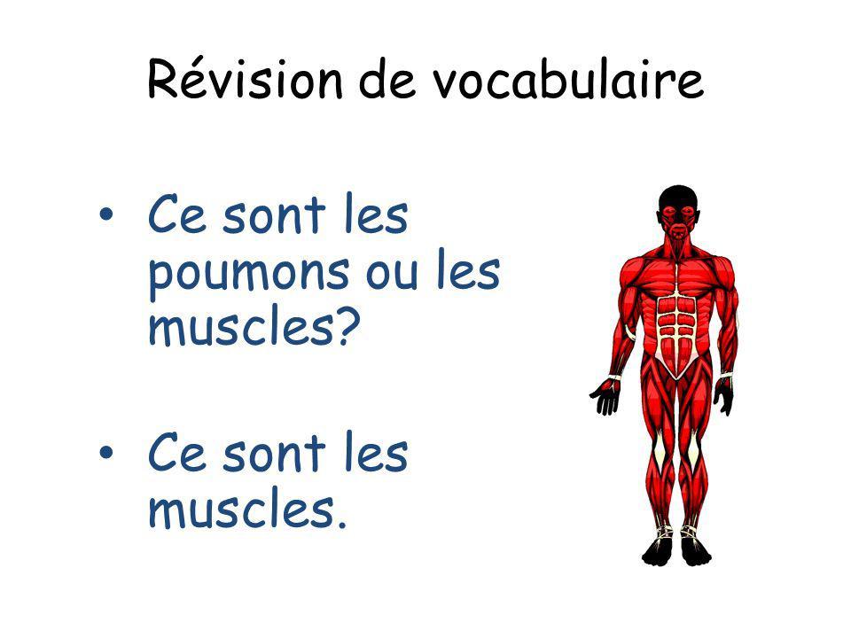 Révision de vocabulaire Ce sont les poumons ou les muscles? Ce sont les muscles.