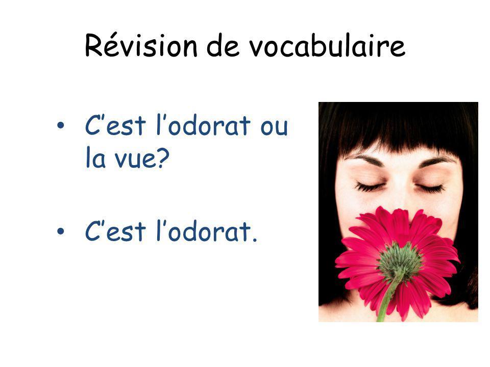 Révision de vocabulaire Cest lodorat ou la vue? Cest lodorat.