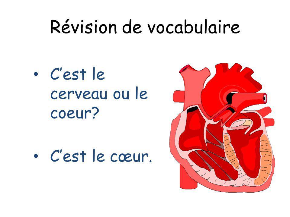 Révision de vocabulaire Cest le cerveau ou le coeur? Cest le cœur.