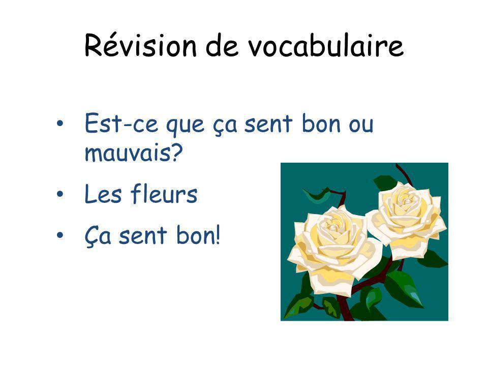 Révision de vocabulaire Est-ce que ça sent bon ou mauvais? Les fleurs Ça sent bon!