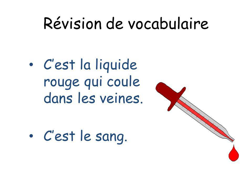 Révision de vocabulaire Cest la liquide rouge qui coule dans les veines. Cest le sang.