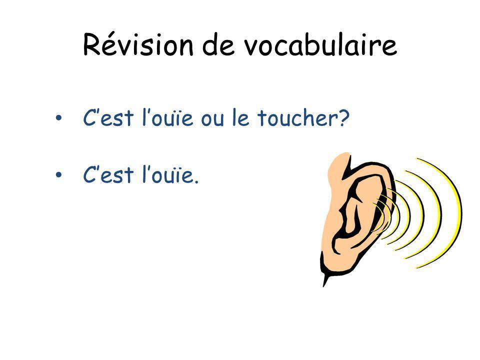 Révision de vocabulaire Cest louïe ou le toucher? Cest louïe.