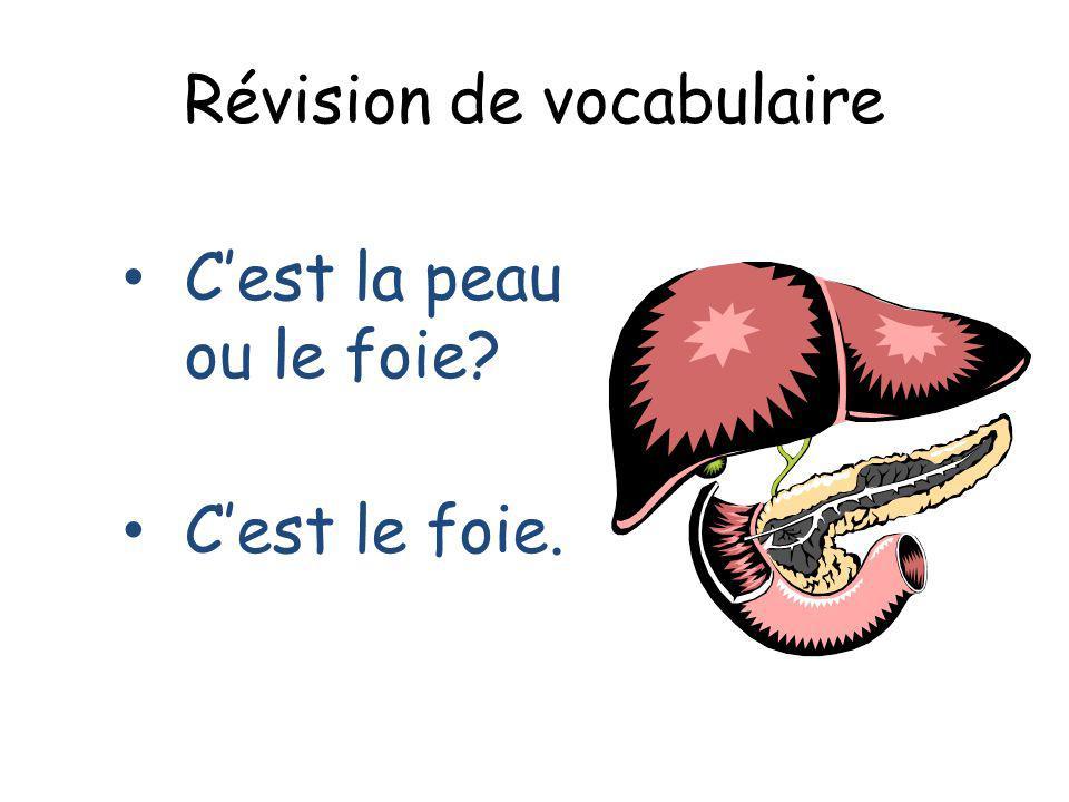 Révision de vocabulaire Cest la peau ou le foie? Cest le foie.