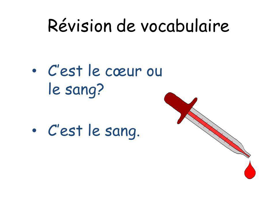 Révision de vocabulaire Cest le cœur ou le sang? Cest le sang.