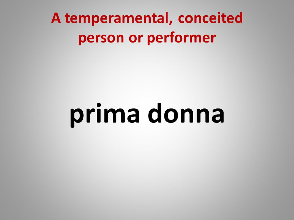A temperamental, conceited person or performer prima donna
