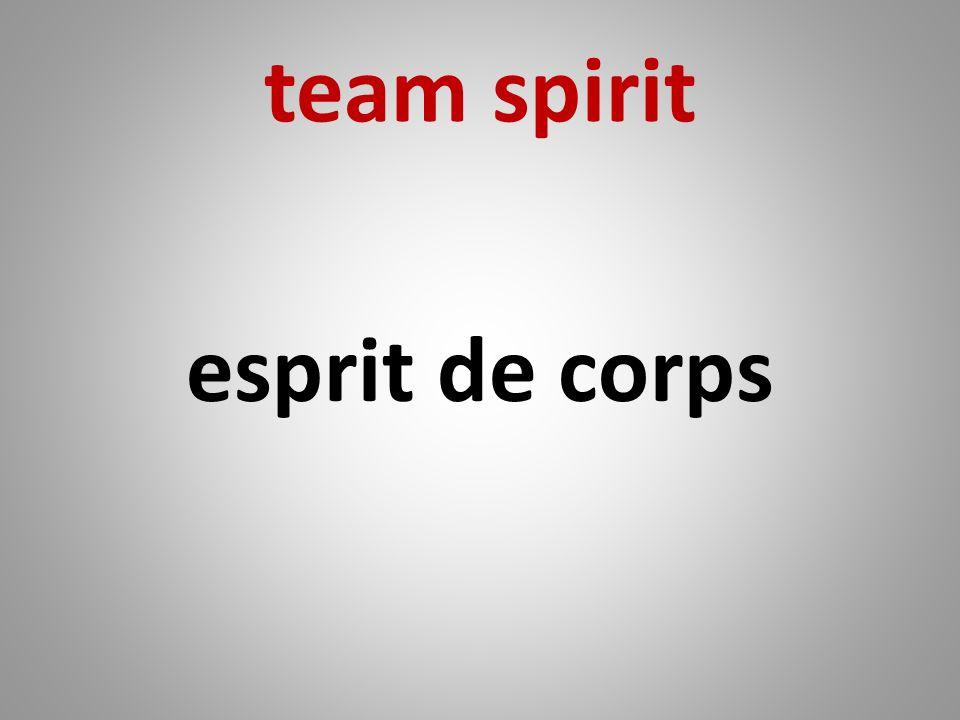 team spirit esprit de corps