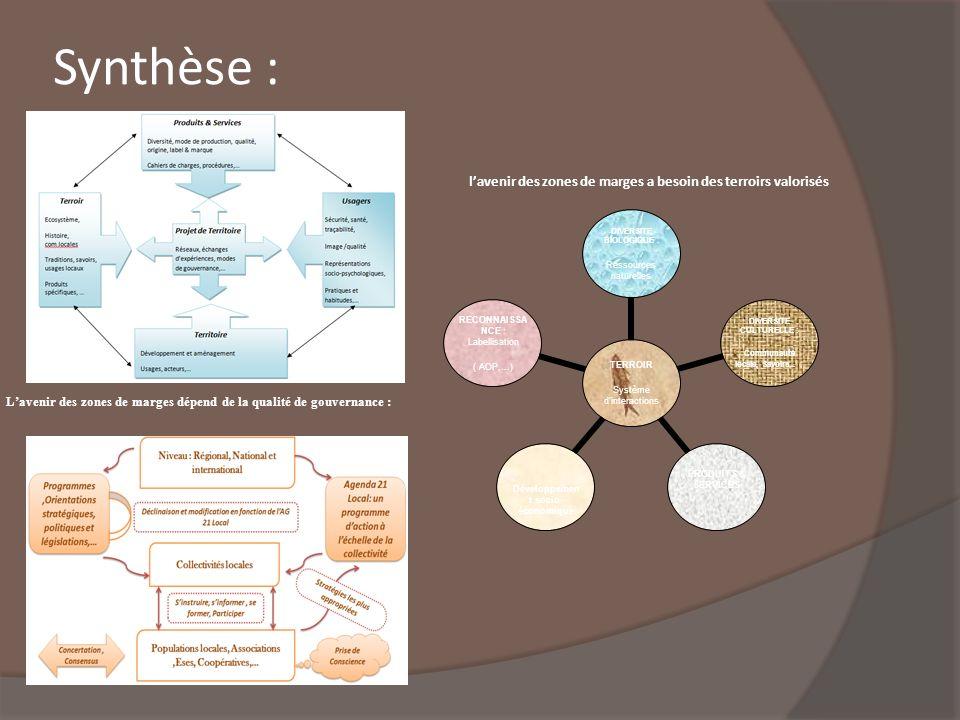 Synthèse : TERROIR Système dinteractions DIVERSITE BIOLOGIQUE : Ressources naturelles DIVERSITE CULTURELLE : Communauté locale, Savoirs,.. ; PRODUITS