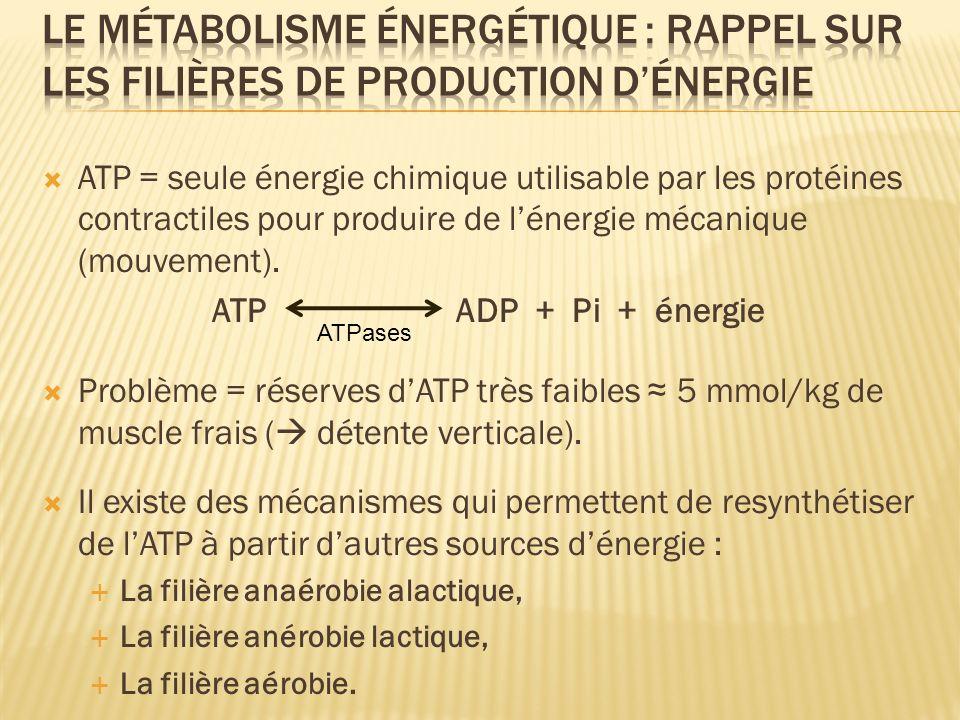 ATP = seule énergie chimique utilisable par les protéines contractiles pour produire de lénergie mécanique (mouvement). ATP ADP + Pi + énergie Problèm