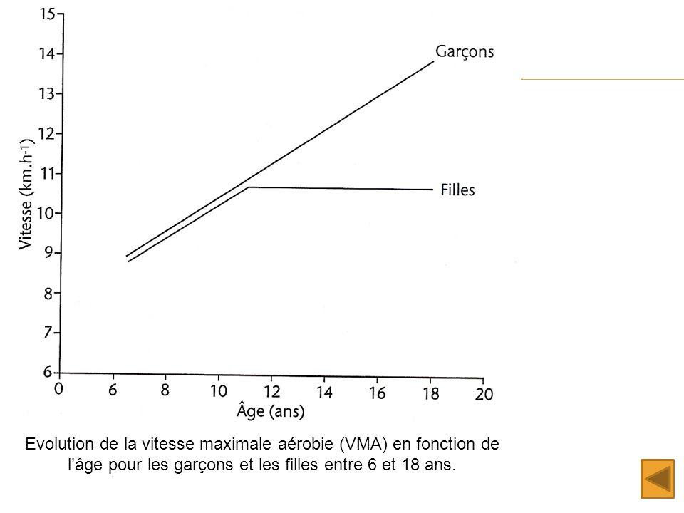 Evolution de la vitesse maximale aérobie (VMA) en fonction de lâge pour les garçons et les filles entre 6 et 18 ans.