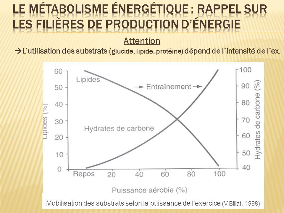 Attention Lutilisation des substrats ( glucide, lipide, protéine) dépend de lintensité de lex. Mobilisation des substrats selon la puissance de lexerc