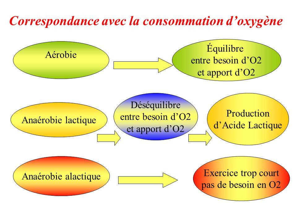 Aérobie Anaérobie lactique Anaérobie alactique Équilibre entre besoin dO2 et apport dO2 Production dAcide Lactique Exercice trop court pas de besoin e
