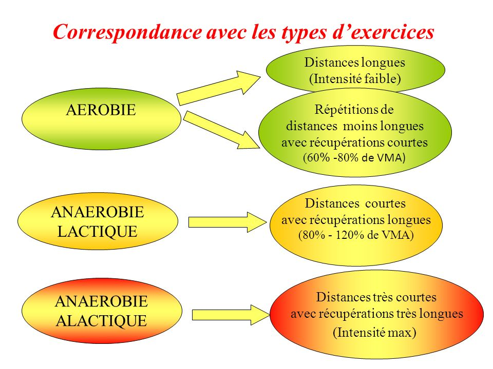 Correspondance avec les types dexercices AEROBIE ANAEROBIE LACTIQUE ANAEROBIE ALACTIQUE Distances longues (Intensité faible) Répétitions de distances