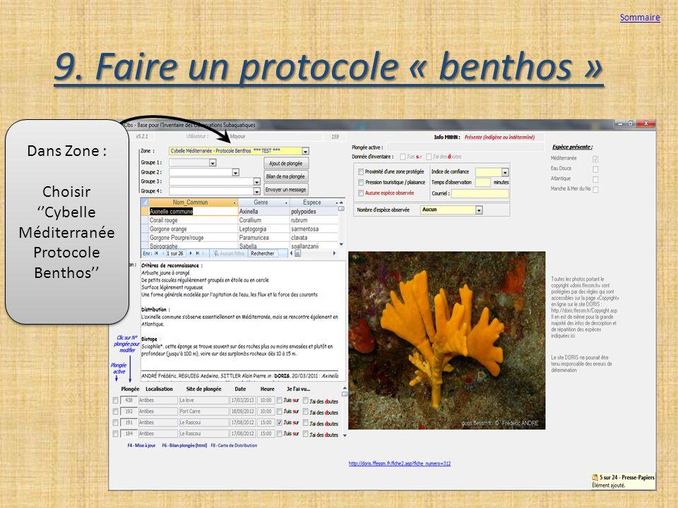 9. Faire un protocole « benthos » Sommaire Dans Zone : Choisir Cybelle Méditerranée Protocole Benthos Dans Zone : Choisir Cybelle Méditerranée Protoco