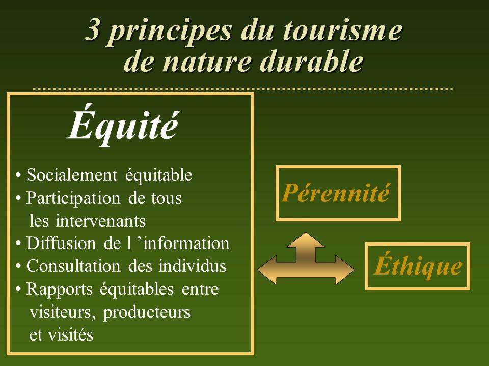 Équité Socialement équitable Participation de tous les intervenants Diffusion de l information Consultation des individus Rapports équitables entre vi